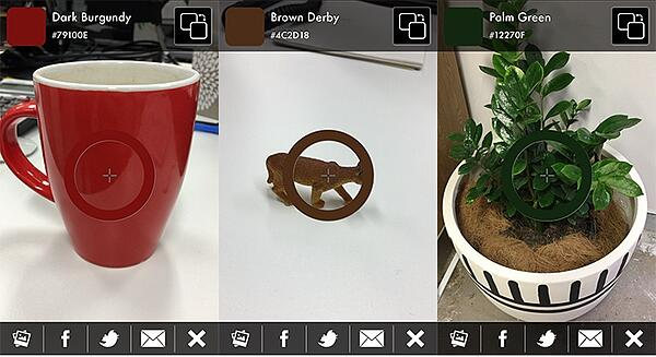 Left-Right: One red mug, Brown doll, and a green plant in a white plot