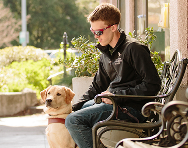 Man sitting on park bench with his guide dog sitting at his side.