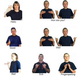 Basic phrases in AUSLAN