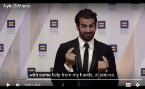 nyle-3-300x184.png